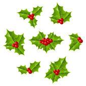 Christmas holly leaves — Stockvektor