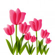 Pink tulips for Your design — Stock Vector