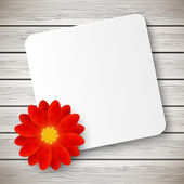 Red flower with Paper card — Stock Vector