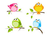 Set of color birds — Stock Vector