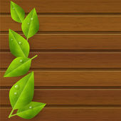 Green leaves on wooden background — Stock Vector