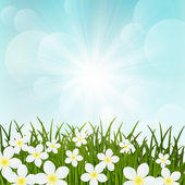 Spring flowers on green grass — Stock Vector