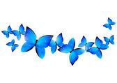 Blue butterflies border — Stock Vector
