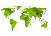 Green World map with ladybug — Stock Vector