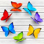 Color butterflies — Stock Vector