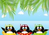 Lustige schwimmen Pinguine — Stockvektor
