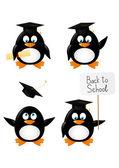 Set of cartoon student penguins — Stock Vector