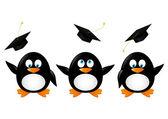 Student penguins — Stock Vector