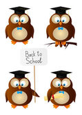 Owl students — Stock Vector