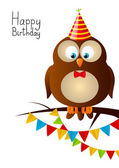 Birthday owl — Stock Vector