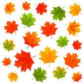 Autumn maple leaves — Stock Vector