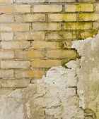 Decaying wall — Stock Photo