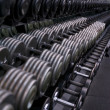 Dumbbell Rack with Silver and Black Weights — Stock Photo