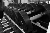 Black and White Image of a Rack of Dumbbells at a Gym — Stock Photo