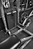 Gym Exercise Equipment - Weight Selector — Stock Photo