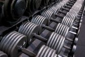 Rack of Dumbbells at a Professional Gym — Stock Photo