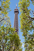 Eiffel Towe — Stock Photo