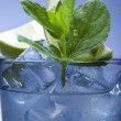 Fresh mojito drink — Stock Photo