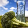 Fitness Food and green grass with blue sky — Stock Photo