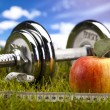 Fitness Food and green grass with blue sky — Stock Photo #12733258