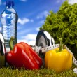Fitness Food and green grass with blue sky — Stock Photo #12733373