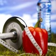 Food and measurement, fitness — Stock Photo #12734487