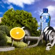 Vitamin and Fitness diet, dumbell in green grass — Foto Stock
