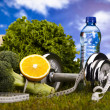 Vitamin and Fitness diet, dumbell in green grass — Stock fotografie