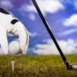Golf ball on tee in driver - Stock Photo
