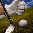 Golf — Stock Photo #13136280
