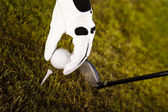 Golf ball on tee — Stock Photo