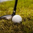 Golf club - Foto Stock