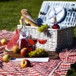Picnic basket — Stock Photo #13143147