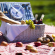 Picnic basket with fruit bread and wine — Stock Photo #13144321