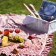 Picnic basket with fruit bread and wine — Stock Photo #13144398