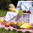 Picnic basket with fruit bread and wine — Stock Photo #13144403