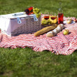 Picnic basket with fruit bread and wine — Stock Photo #13144457