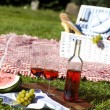 Picnic basket with fruit bread and wine — Stock Photo #13144582