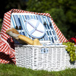 Picnic basket with fruit bread and wine — Stock Photo #13144729
