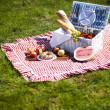 Picnic basket with fruit bread and wine — Stock Photo #13145188