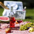 Wine and picnic basket on the grass — Stock Photo #13145195