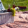 Picnic basket with fruit bread and wine — Stock Photo #13145466