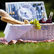 Wine and picnic basket on the grass — Foto de Stock