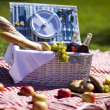 Stock Photo: Picnic on grass
