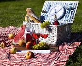 Picnic basket — Stock Photo