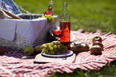 Wine and picnic basket on the grass — Stock Photo