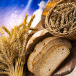 Traditional bread — Stock Photo #14216035