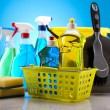 Group of assorted cleaning — Stock Photo