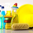 Cleaning products — Stock Photo #14222599