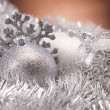 Christmas decoration — Stock Photo #14224599